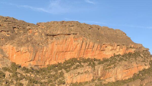 Taipan Wall